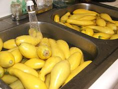 Canning Granny: Canning Yellow Summer Squash