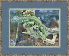 Iguana No. 3 In Muted Tones Framed Print By Shelly Weingart