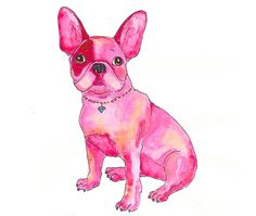 Luvabull Frenchies: For the love of all things Frenchie...