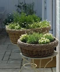 herb baskets, for my big baskets under t he steps at beach!