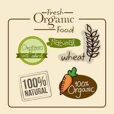 fresh organic food - about butter...