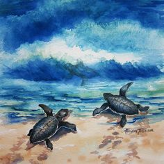 Baby Sea Turtle Watercolor print 11 x 11 or 12 by watercolorsNmore
