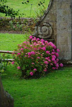 Rendez-vous n°2 : nos jardins secrets / L'abbaye de Beauport