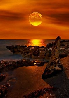 Golden sunset over the coastline....