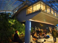 Sky Garden Londres - Restaurante e Bar