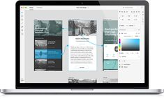 User experience, prototyping and design app | Adobe Project Comet <3 heaven