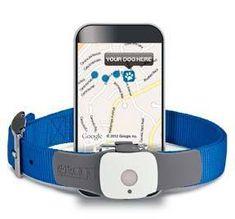 GPS Dog Tracking Via iPhone | TAGG.