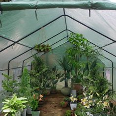 20′x10′x7′ Greenhouse Plant Gardening Spiked Greenhouse Tent - 20ftx10ftx7ft