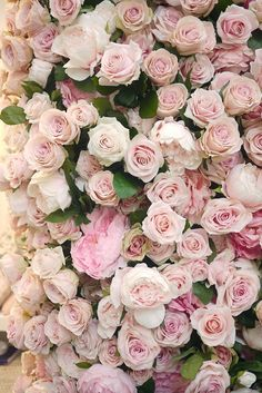 Wall of Pink Fragrant Roses Floral Backdrop Arch - Philippa Craddock Flowers at Brides The Show