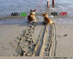 funpot: ABS.jpg von Schnurri