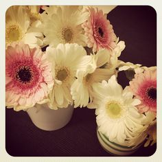 Daisies from Salling, Aalborg  Homemade by me ☺️