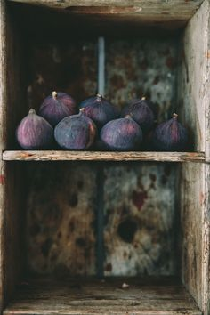 Fig planted Eight Fabulous Figs - Food Photography Styling, Food Styling, Photography Tips, Fruit Défendu, Fresh Fruit, Mabon, Fig Tree, Foto Art, Still Life Photography