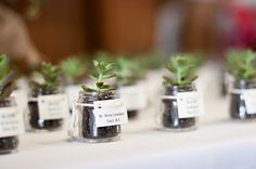 Here are some non-traditional, wedding favor ideas.  They would be more expensive to prepare, however would be perfect and personal for a smaller wedding.  My favorite is sending out small plants to each party.  Another sweet idea on the page was to take a flower.  This made me think that the table arrangements themselves could be the party favors!