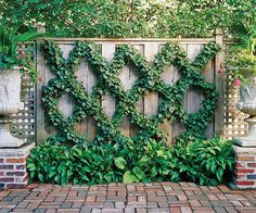 Don't just put up a fence and leave it at that. Grow something over the structure to add color and dimension. Here, English ivy trained in a diamond espalier pattern turns a plain screen into a piece of living art.