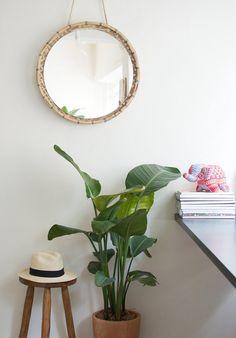 #interior #interieur #pflanzen #plants #planters #pflanze #pflanzenfreude #wohnen #living #plant