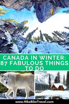 87 Fabulous Things to Do in Canada in Winter – Hike Bike Travel Source by lindsaylizjay Backpacking Canada, Canada Travel, Winter Hiking, Winter Travel, Riding Mountain National Park, Stuff To Do, Things To Do, Canada Holiday, Viajes