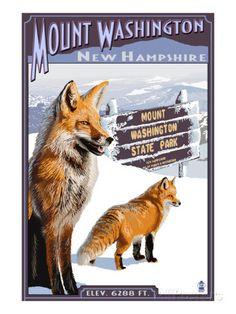 Mt. Washington, New Hampshire - Fox Scene Poster by Lantern Press at AllPosters.com