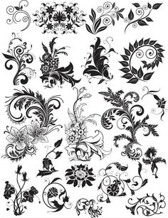 Different Flowers free vector
