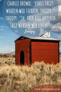 """Charlie Brown: """"Eines Tages werden wir sterben, Snoopy."""" Snoopy: """"Ja, aber alle anderen Tage werden wir leben!"""" Snoopy. Motivierende, schöne und inspirierende Sprüche und Zitate. #Spruch #Zitat #Motivation #Inspirierend"""