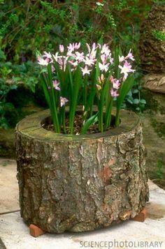 decorar jardin con madera 1