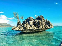 Mauritius Hotels - Amazing Deals on Hotels in Mauritius Mauritius Hotels, Mauritius Island, Paradise Island, Island Life, British Virgin Islands, Tahiti, Land Scape, Travel Inspiration, Places To Visit
