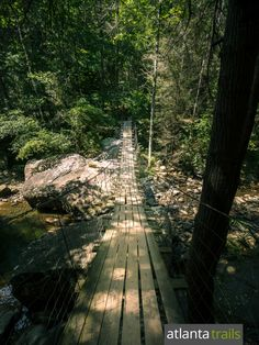 Our favorite Chattanooga hikes: cross Middle Creek on a long suspension bridge on the Cumberland Trail at Signal Mountain Florida Keys Camping, California Beach Camping, Camping And Hiking, Hiking Trails, Signal Mountain Tennessee, Hiking In Georgia, Beautiful Forest, Mountain Hiking, Day Hike