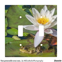 Shop A frog under a flower of water lily light switch cover created by MELaBadiePhotography. Personalize it with photos & text or purchase as is! Wedding Color Schemes, Wedding Colors, Light Switch Covers, Photos, Photographs, Invitation Cards, Art For Kids, Create Your Own, Wedding Gifts