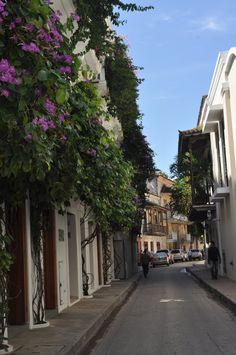 The beautiful streets of Cartagena, Colimbia!