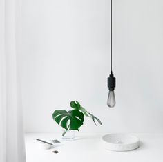 New post on interiorsthetic