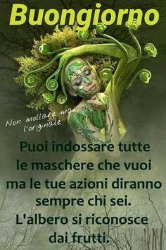 Italienische Zitate Verona Beste Zitate Achtsamkeit Weisheit Worter Spruche