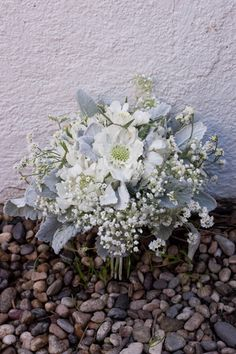 white Scabiosa and Ranunculus as the main flowers, and mixed in Dusty Miller, Misty Linolium, and Baby's Breath. Flower Centerpieces, Wedding Centerpieces, Wedding Bouquets, Flower Arrangements, Bridesmaid Bouquet, Silver Wedding Colours, Floral Wedding, Wedding Flowers, Grey Flowers