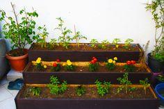My new garden :)