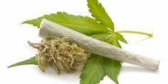 o-marihuana-facebook-42167-636x0 (1)