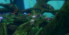 Final Fantasy World www.gameworldhub.com