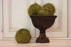 DIY moss balls.