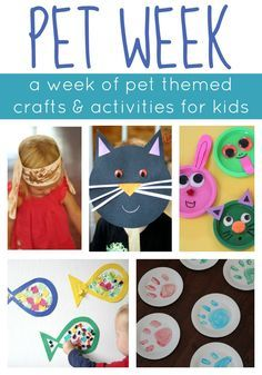 128 Best Theme Pet Crafts Images Preschool Preschool Activities