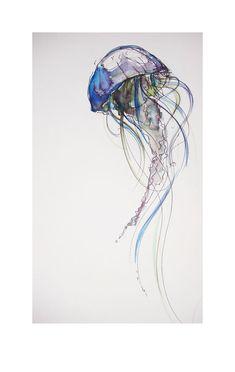 Jellyfish by photographer-amymay.deviantart.com on @deviantART