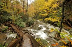 Top 15 Scenic Drives near Asheville in the Blue Ridge Mountains