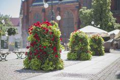 Jak zabezpieczyć ulice miast? | Inspirowani Naturą | big flower decorations terra group against terrorism