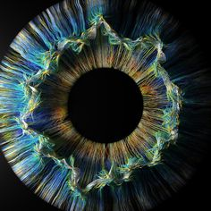 Houdini & Redshift Explorations on Behance Iris, Foto Macro, Crown Aesthetic, Eye Close Up, Eyes Artwork, Circle Art, Generative Art, Eye Photography, Arte Horror