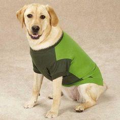Guardian Gear Insect Shield Dog T-Shirt - Green at BaxterBoo