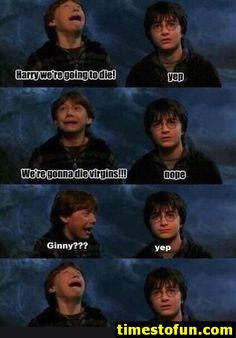Here we have a collection of Harry Potter memes.These memes will always make you laugh.Some are hilarious about Voldemort character. Harry Potter Humor, Saga Harry Potter, Harry Draco, Harry And Ginny, Harry Potter Ships, Harry Potter Universal, Draco Malfoy, James Potter, Drarry