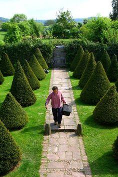 Landscape Focused: landscape, garden design ideas — Monty Don in his garden at Longmeadow. Images by. Monty Don Longmeadow, Longmeadow Garden, Biodynamic Gardening, Indian Garden, Garden Borders, Garden Pictures, Garden Inspiration, Garden Ideas, Hedges