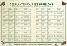 La fleur, la pollinisation et les insectes                    La pollinisation est le mode de reproduction privilégié des fleurs angiosper...