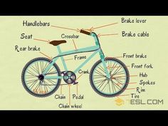 1.9Kshares Learn Bicycle Parts Vocabulary in English. A bicycle, also called a cycle or bike, is a human-powered, pedal-driven, single-track vehicle, …