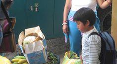 Działanie systemów nawadniających oraz szkolenie agroekologiczne w Ekwadorze.