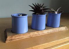 Recycled oak flooring and 'La Fermiere' yoghurt pot cactus planter with circular recesses made with a plunge router.