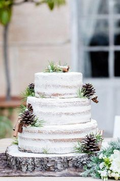 How gorgeous is this winter wonderland wedding cake with frosted pine cones?, How gorgeous is this winter wonderland wedding cake with frosted pine cones? Winter Desserts, Wedding Cake Rustic, Cool Wedding Cakes, Elegant Wedding, Timeless Wedding, Trendy Wedding, Winter Torte, Pine Cone Wedding, Christmas Wedding Cakes