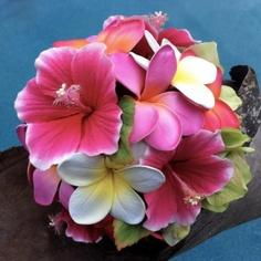 Plumeria and hibiscus