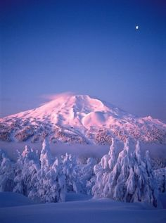 Mt Bachelor, Bend, Oregon, yep, USA. Even if I never left the states again, I could never see all the spectacular places and have enough time to visit with and listen to all of the people whose stories I'd love to hear.